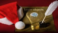 photo_Brain_objects_christmas_santa hat