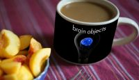 photo_Brain_objects_coffee cup mug peaches