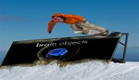 photo_Brain_objects_snow boarder